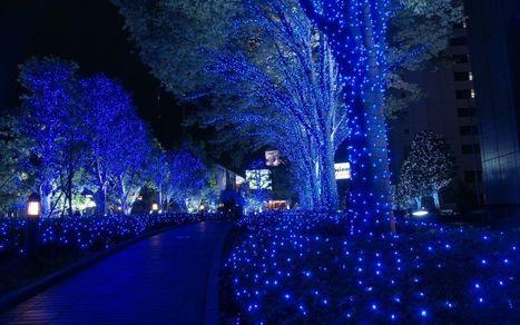 Preparar viaje a Japón. Japón   Viajeros Callejeros   Travelling   Scoop.it