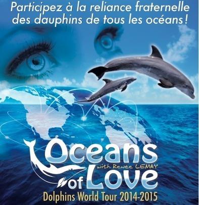 Oceans of love - Dolphins World Tour 2015 - Retrouvez votre nature | location-landes-mimizan-plage nature | Scoop.it