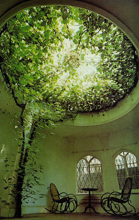 26 Green Ideas That Bring Nature Into Your Home | Video Conferencing - Distance Education: Tips, Pedagogical Practice and School Stories | Scoop.it