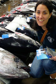 Q&A: Tuna Fisheries Must Make Short-Term Sacrifices   Food issues   Scoop.it