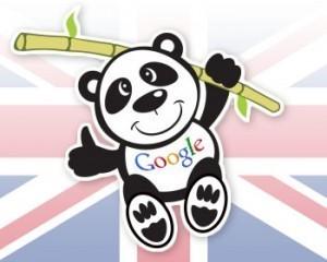 Comment corriger son site s'il est victime de Google Panda [vidéo en français] | A l'ère du webmarketing. | Scoop.it