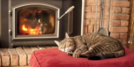 9 Unusual Ways To Warm Your Home Without Turning Up The Heat | Troy West's Show Prep | Scoop.it