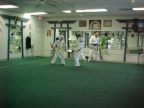 Why Are the Martial Arts so Great for People with Disabilities? | Self Protection | Scoop.it