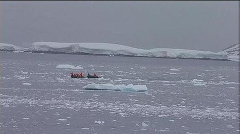 As alterações causadas pelo degelo no Ártico | Ecologia e cultura | Scoop.it