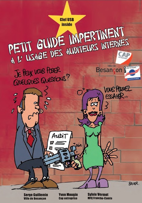 "Un ""Petit guide impertinent à l'usage des auditeurs internes"" 