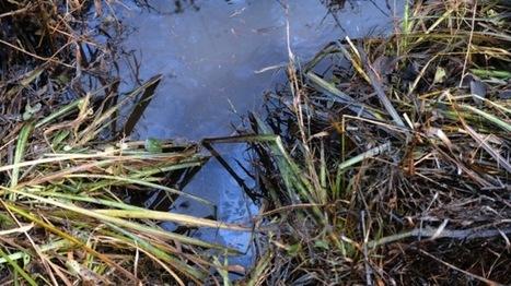 Olieramp op Nederlands-Duitse grens - Eén Vandaag | Bodem en Water | Scoop.it