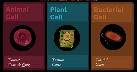 Cell Games - Animal Cell, Plant Cell and Bacteria Cell | HCS Learning Commons Newsletter | Scoop.it