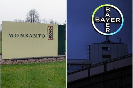 It's Official — Bayer Announces $62 Billion Bid for Monsanto | anonymous activist | Scoop.it