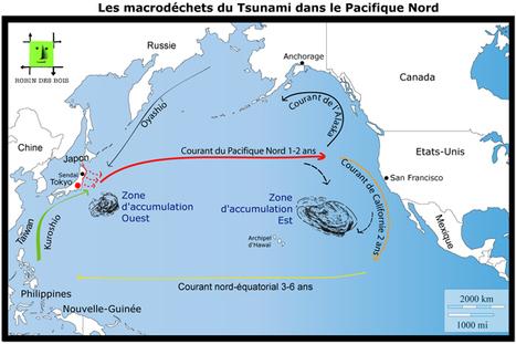Robin des Bois - Séisme et tsunami au Japon, communiqué n°16 | Japan Tsunami | Scoop.it