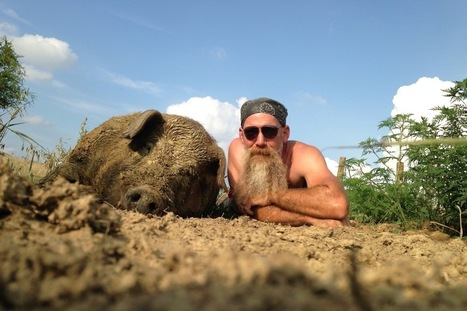 To Save These Pigs, Ky. Farmer Says We Have To Eat Them | Liv & Røre | Scoop.it