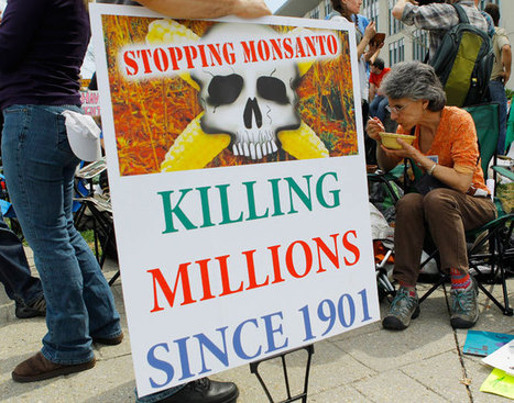 Monsanto Protests Coming to 36 Countries | World Peace | Scoop.it