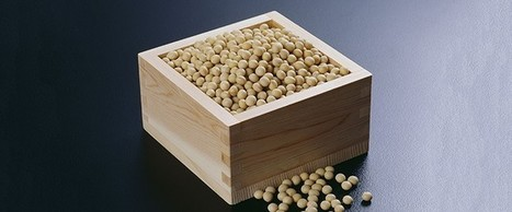 Study: #GMO #Soy Accumulates #Cancer-Causing #Formaldehyde | Messenger for mother Earth | Scoop.it