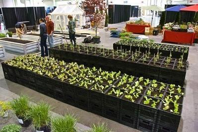 Faire pousser des fermes urbaines éphémères en milieu urbain - ZEBREA   Charlotte Cprn   Scoop.it