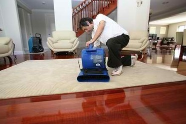 The Ideal Way To Treat Carpet Water Damage - The Ideal | Hair Extensions Melbourne | Scoop.it