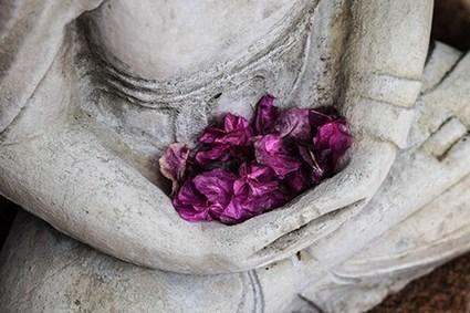 Croyances et neurosciences, tout savoir sur la méditation (1/3) | ACTU WEB MINDFULNESS | Scoop.it