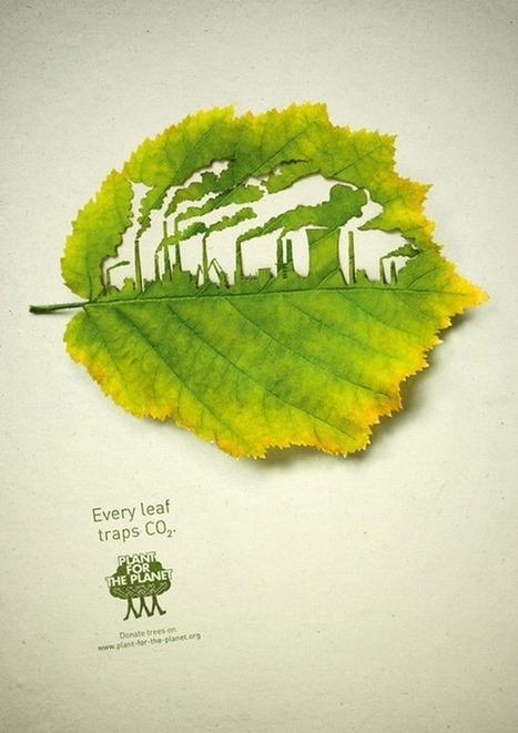 28 de enero, Día Mundial de la Reducción de las Emisiones de CO2 | Conciencia Eco | ideas verdes | Scoop.it