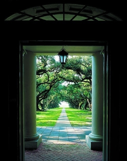 Oak Alley Plantation ~ Vacherie, Louisiana--Looking out the front door towards t | Oak Alley Plantation: Things to see! | Scoop.it