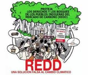 ¡No REDD! Guía para Pueblos Indígenas | Changing development with climate change | Scoop.it