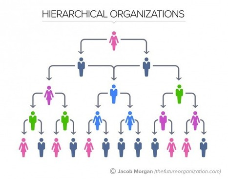 The 5 Types Of Organizational Structures: Part 1, The Hierarchy | Organisation Development | Scoop.it