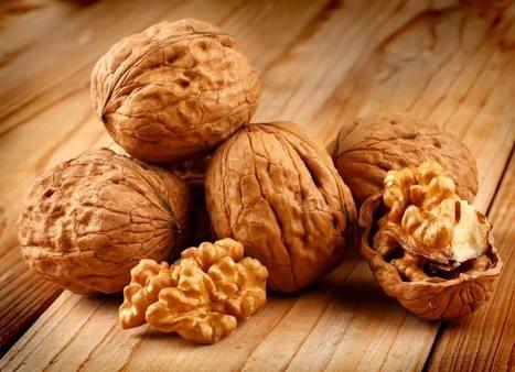Le noci: frutto dalle proprietà uniche | Il mio amico pediatra | Scoop.it