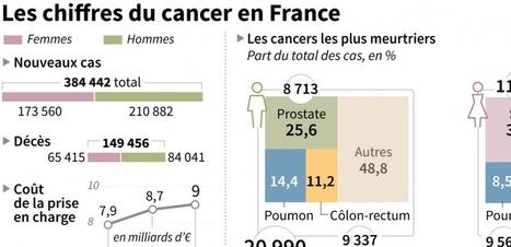 Cancers : en France, la lutte contre la maladie porte ses fruits | All about Pharma by Pharmacomptoir | Scoop.it