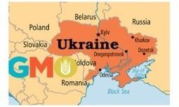 Ukraine: la culture OGM, monnaie d'échange de banques occidentaleset FMI pour accorder des prêts ? - Le Blog Finance | VENDRESONBLE | Scoop.it