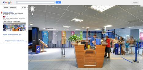 Expérience aquatique à 360° avec la visite virtuelle Google de l'aquarium de Lyon | Astuces numériques des pros du tourisme du Rhône | Scoop.it