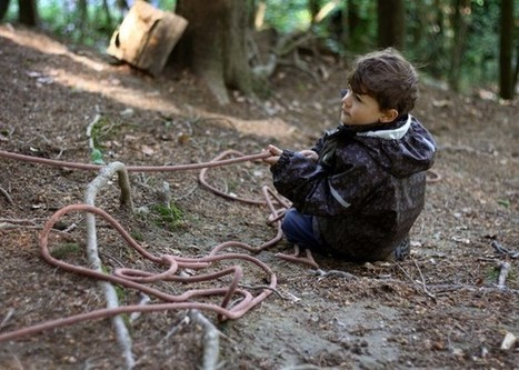 American Kids Don't Know How to Explore. Maybe What They Need Is Forest Kindergarten. | Nature Deficit Disorder | Scoop.it