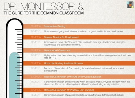 """Montessori Approach Seeks To Cure """"Common Classroom"""" 