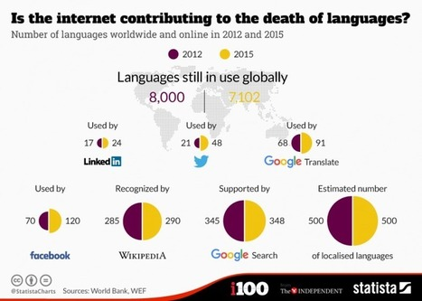 The Internet Makes Most Languages Extinct? | Game-Changer | Translation Memory | Scoop.it