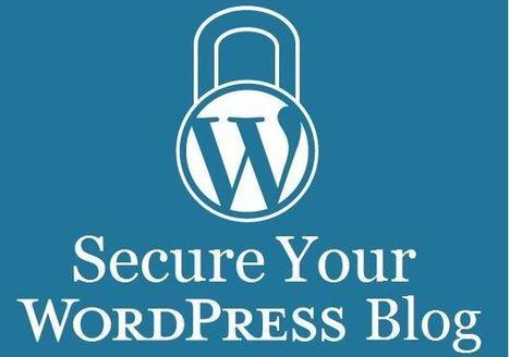 WordPress va forcer tous les webmasters à installer le HTTPS en 2017 !   BeinWeb - Conseils et Formation Webmarketing pour entrepreneurs et PME motivés   Scoop.it