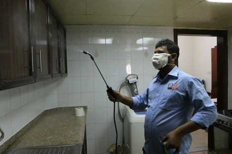 Untrained pest-control staff 'putting lives of Abu Dhabi residents at risk' | The National | Pest Inspection and Treatment in NC | Scoop.it