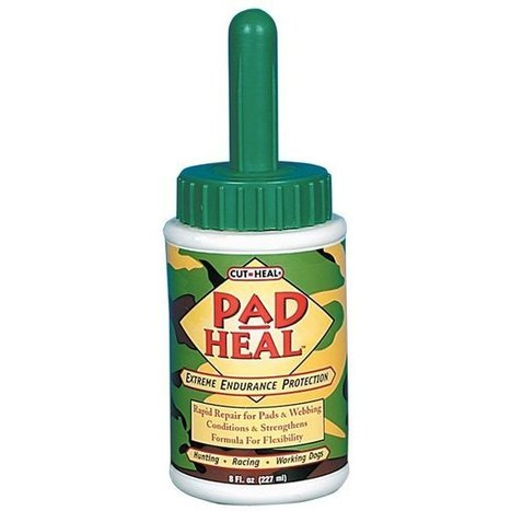 Pad Heal for Dogs 8 oz. Dog Products - GregRobert Pet Supplies | cats & dogs! | Scoop.it