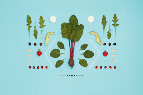 Food Art, une alimentation équilibrée et symétrique | Food News | Scoop.it