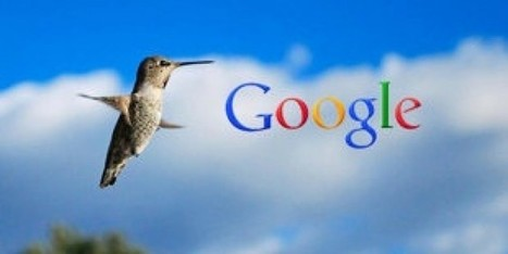 """Hummingbird starts its journey with a """"hello"""" to the SEO users 