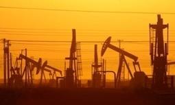 Climate change: UN backs fossil fuel divestment campaign | GarryRogers Biosphere News | Scoop.it
