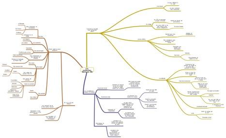 Une carte mentale pour présenter les recherches libres après la discussion collective avec les 6e coop' | Le site d'HGEC du collège VanGogh d'Emerainville… | HG Sempai | Scoop.it