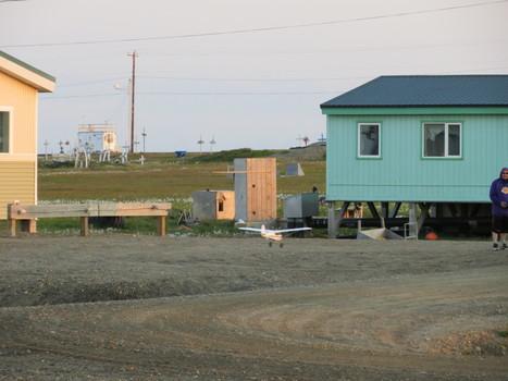 Barter Island ...Includes Bears   Alaska   Scoop.it
