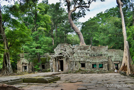 Angkor: Ta Prohm, el templo invadido por la jungla | Blogs en comunidad | Scoop.it