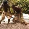 Fair Trade sacc
