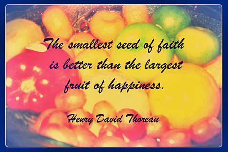 Seed is better than Fruits ~ Life Notes   Life Notes   Scoop.it