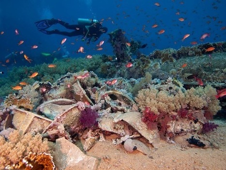 Can Swarming Robots and Cloud Umbrellas Help Save Coral Reefs? | Coral Reefs | Scoop.it