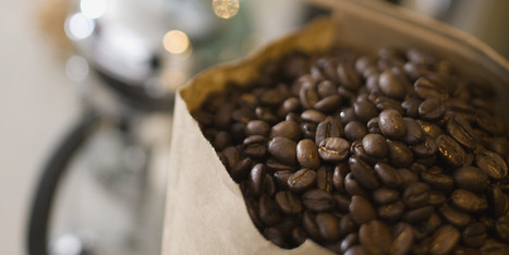 Why You Shouldn't Store Your Daily Coffee In The Freezer... | Coffee News | Scoop.it
