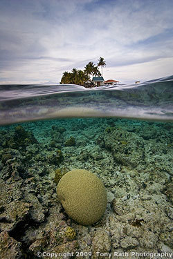 South Water Caye Marine Reserve | Belize in Social Media | Scoop.it