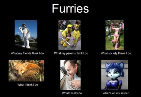 Furries | What I really do | Scoop.it