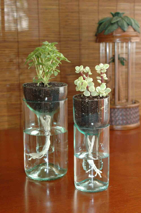 self watering planter made from recycled wine bottle | There's no place like home! | Scoop.it