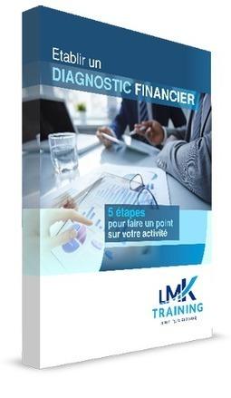 Gratuit! Votre guide pour établir le diagnostic financier de votre entreprise! - LMK Training | Directions financières TPE et PME | Scoop.it