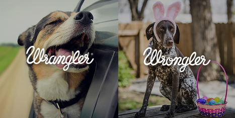 """Wrangler """"Wrangler vs Wrongler"""" by We Are Pi   Digital Marketing and creative campaigns   Scoop.it"""