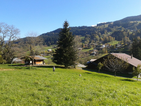 Projet de loi montagne : les députés remontent la pente - | Ecobiz tourisme - club euro alpin | Scoop.it