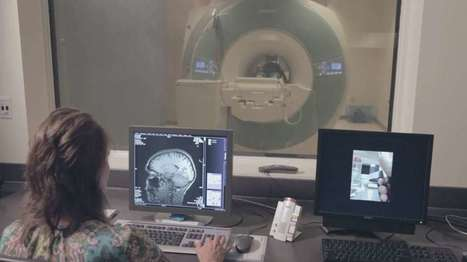 The brain stores memories relative to time and place of origin   The future of medicine and health   Scoop.it